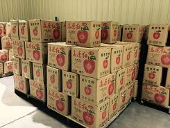 果蔬冷藏仓储服务