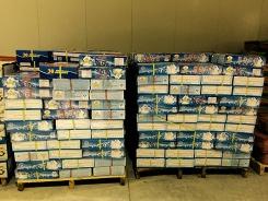 水产品冷藏仓储服务